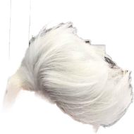Hair Png Hair Png Boy Hairstyles White Hair