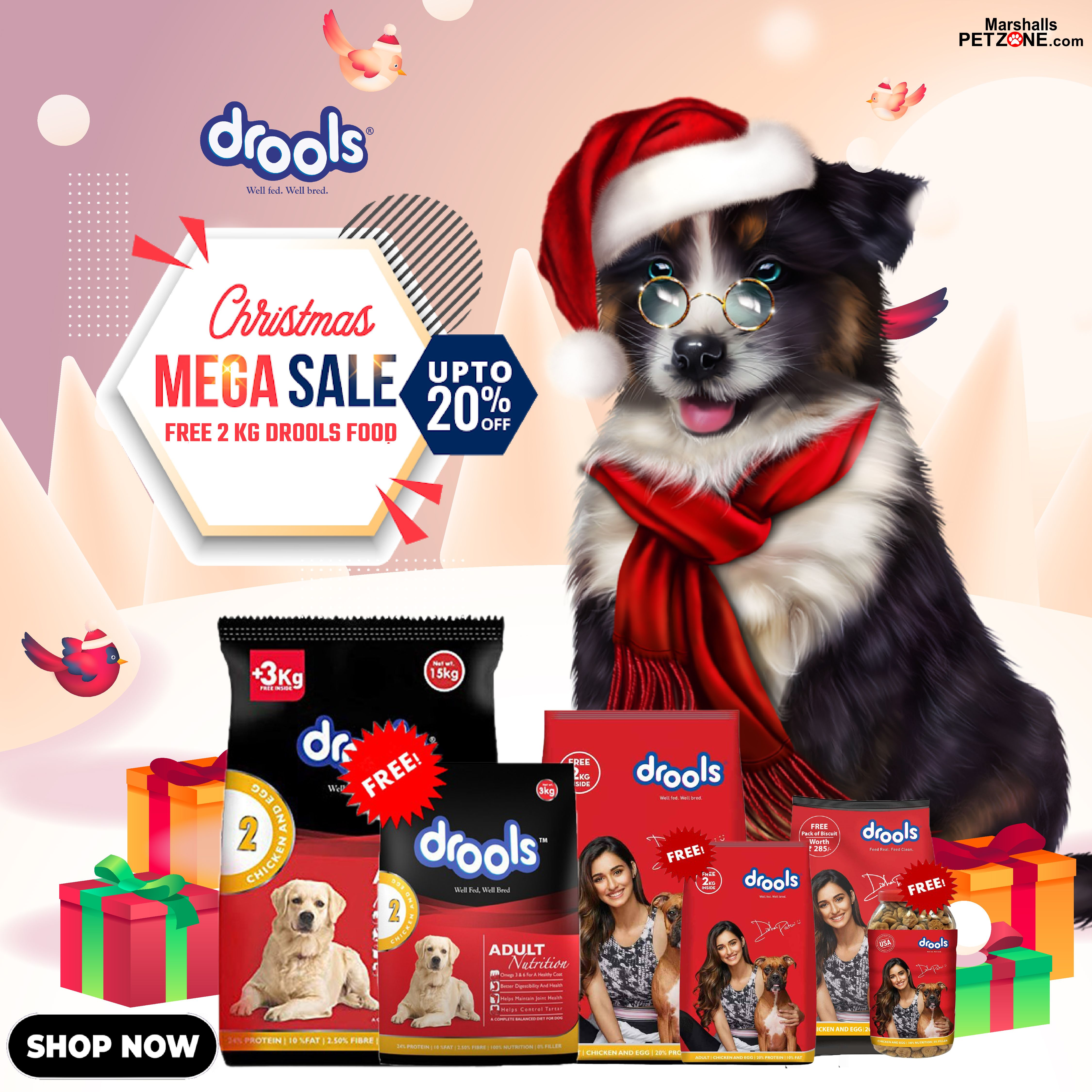 Ho Ho Christmas Sale Free 2 Kg With Drools Food In 2020 Best Dry Dog Food Dog Food Online Dog Food Recipes