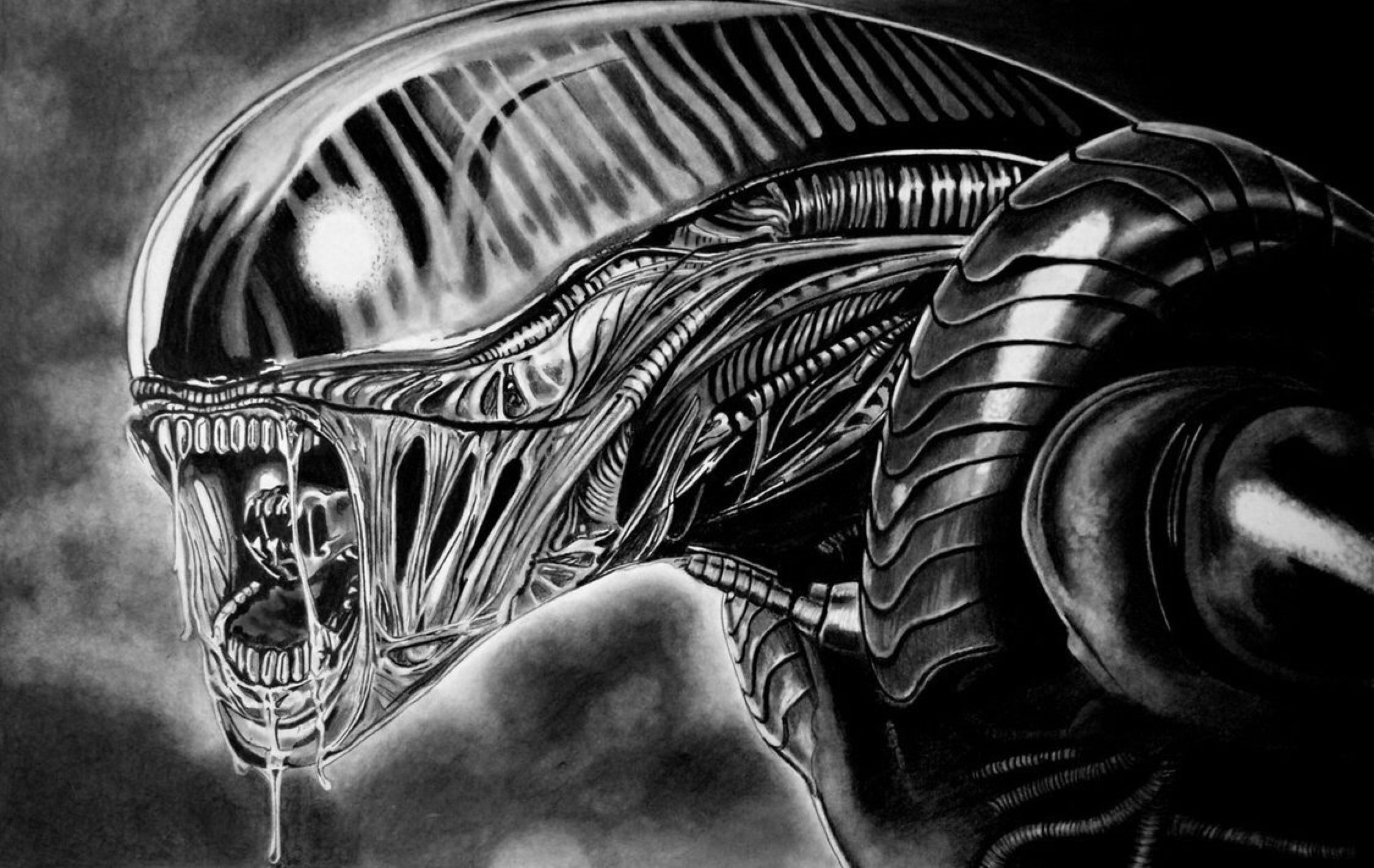 Alien drawing development animation by paul shanghai on deviantart