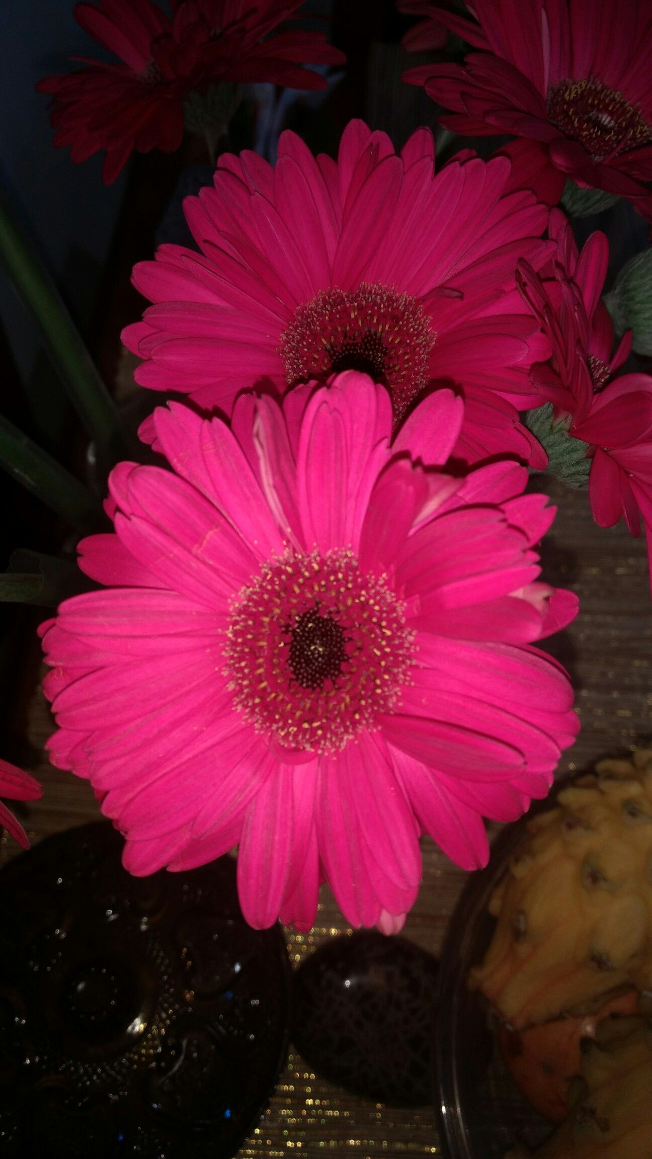 Pin by mercedes salazar on postales pinterest flowers beautiful gerbera daisies beautiful scenery beautiful flowers flower power natural beauty daisy perfume wellness bouquet izmirmasajfo
