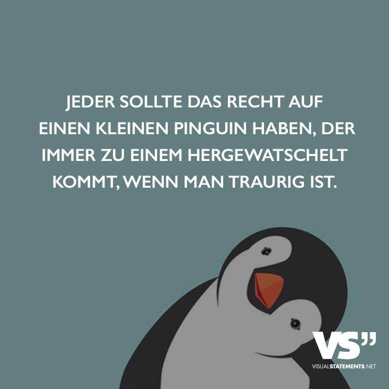 sprüche wenn man traurig ist Jeder sollte das Recht auf einen kleinen Pinguin haben, der immer  sprüche wenn man traurig ist