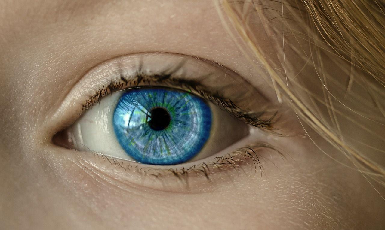 Kostenloses Bild Auf Pixabay Auge Blaue Augen Iris Pupille