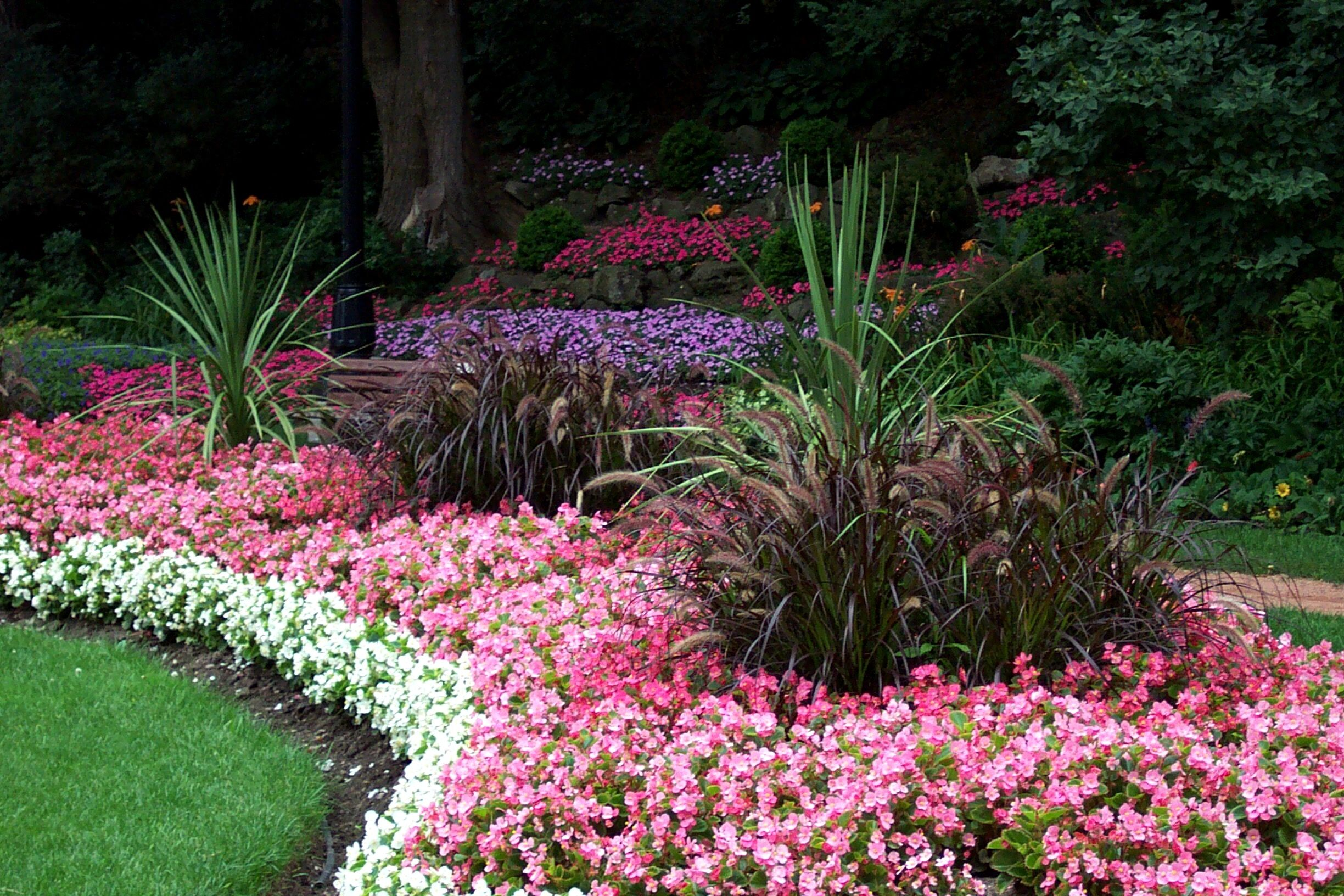 Landscaping Around Trees Ideas Landscaping Around Trees Flower Beds Tree Surgeons