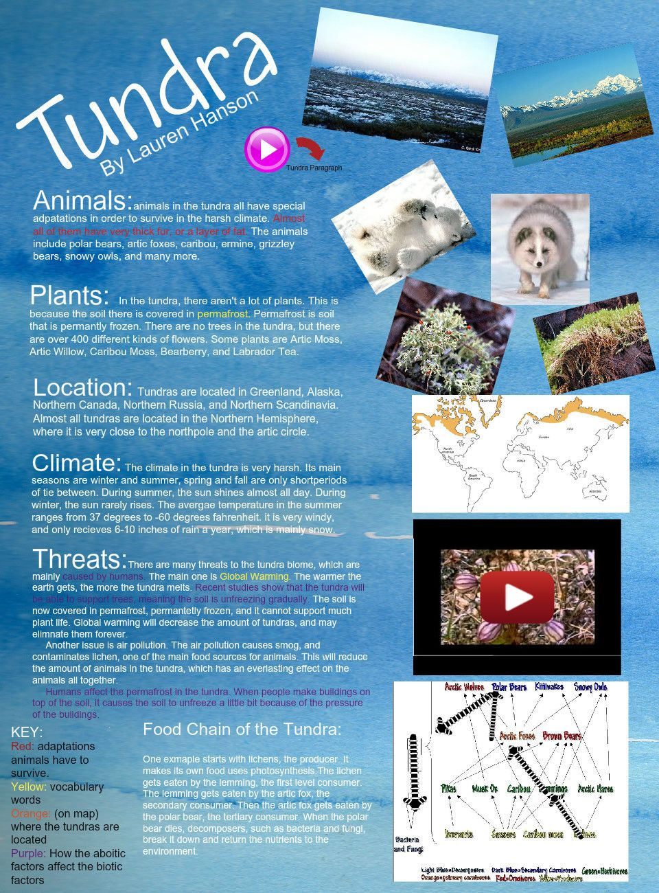 Tundra Ecosystems projects, Biomes project, Ecosystems
