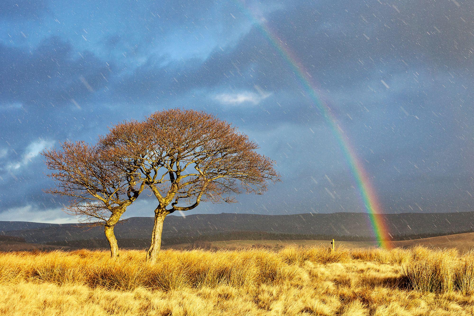 Dopo una tempesta nello York, Regno Unito. (Mat Robinson, Weather photographer of the year 2016.