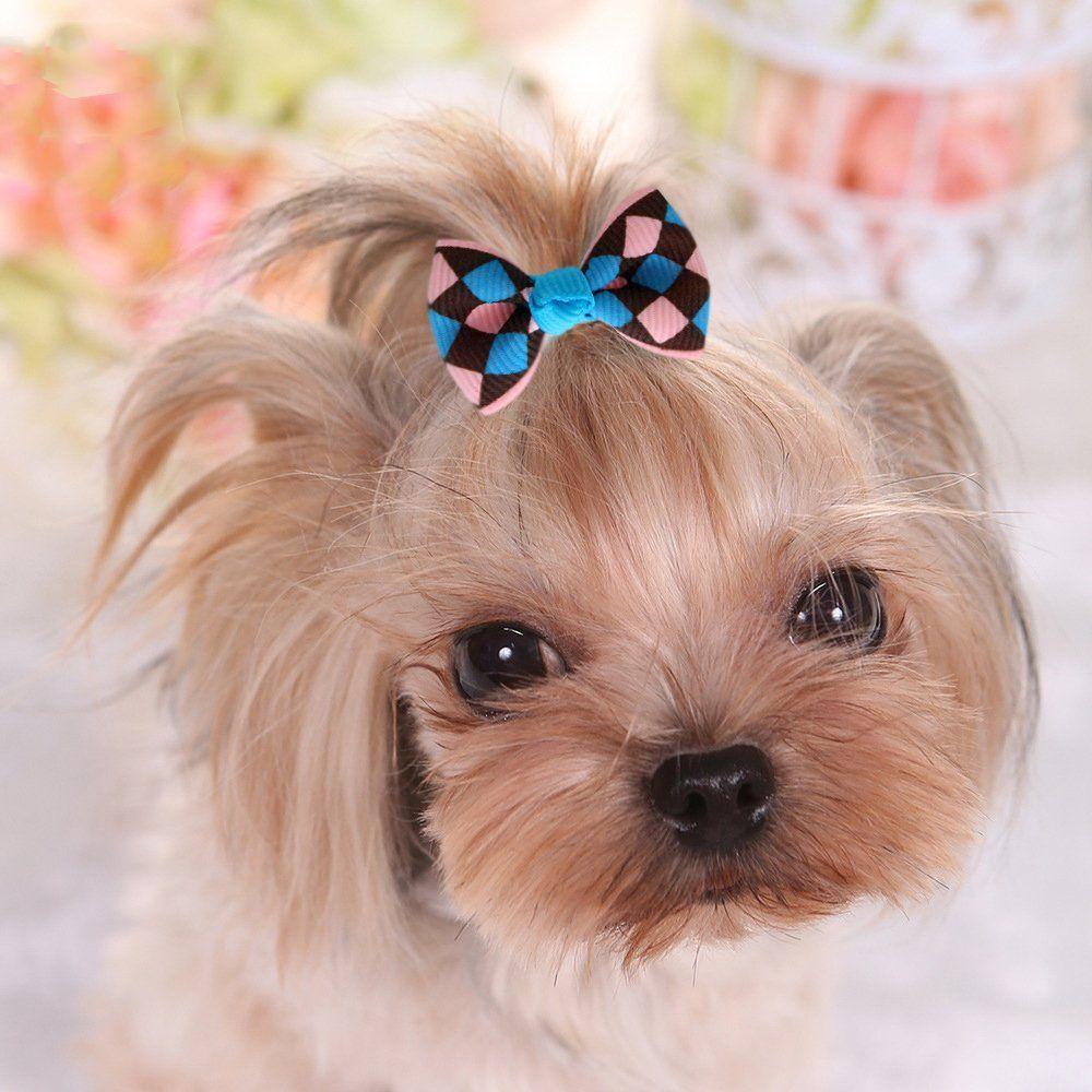 YOY 11pcs/11 Pairs Adorable Grosgrain Ribbon Pet Dog Hair Bows
