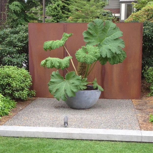 Gunnera architectural potted plant steel wall SEI Scot Eckley