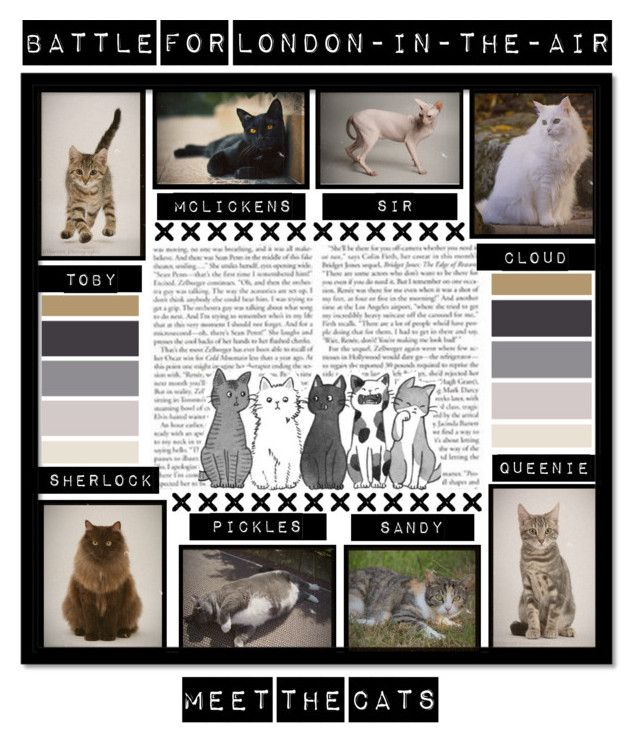 """""""Battle for LITA 