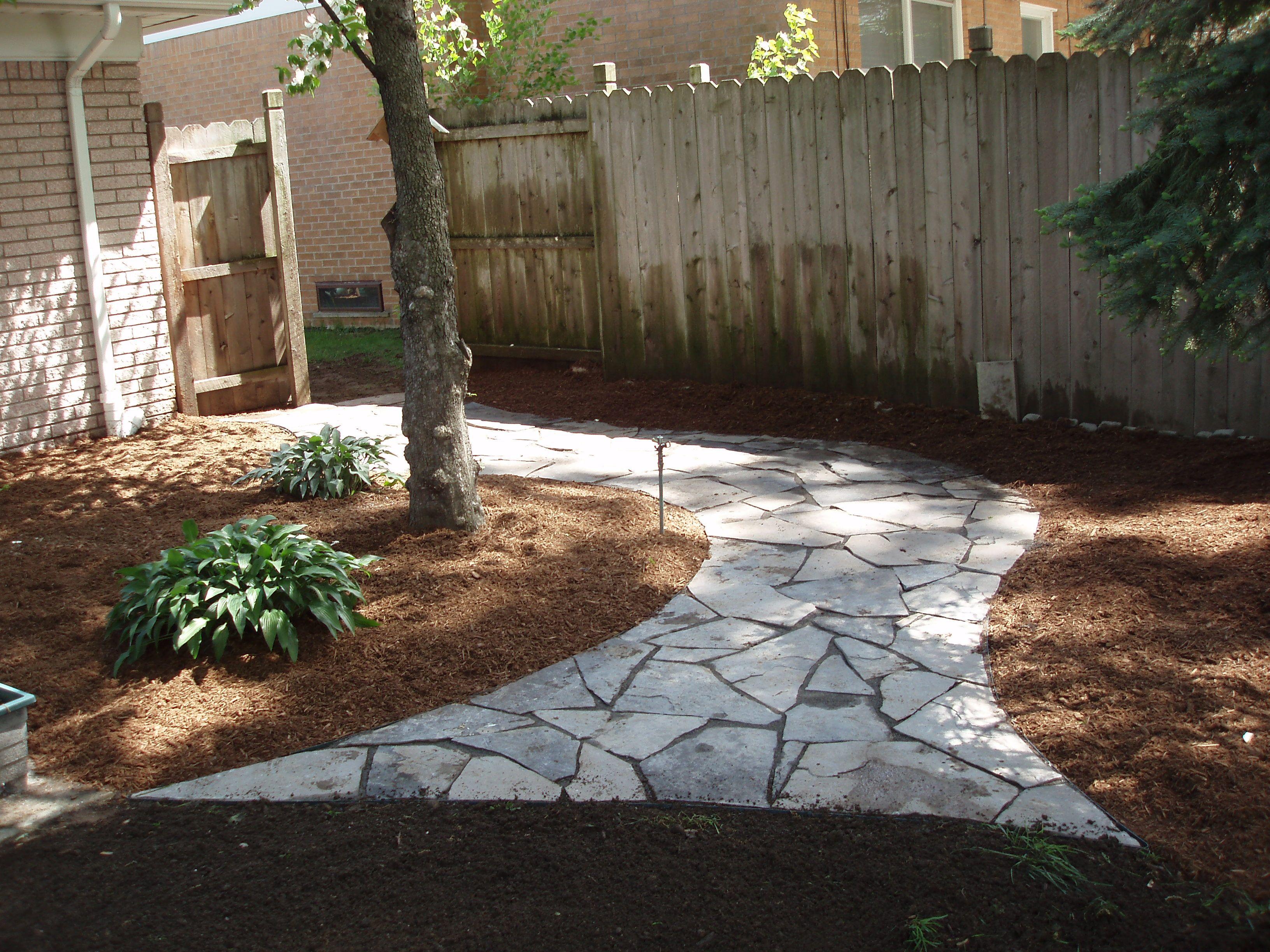 grassless backyard landscaping
