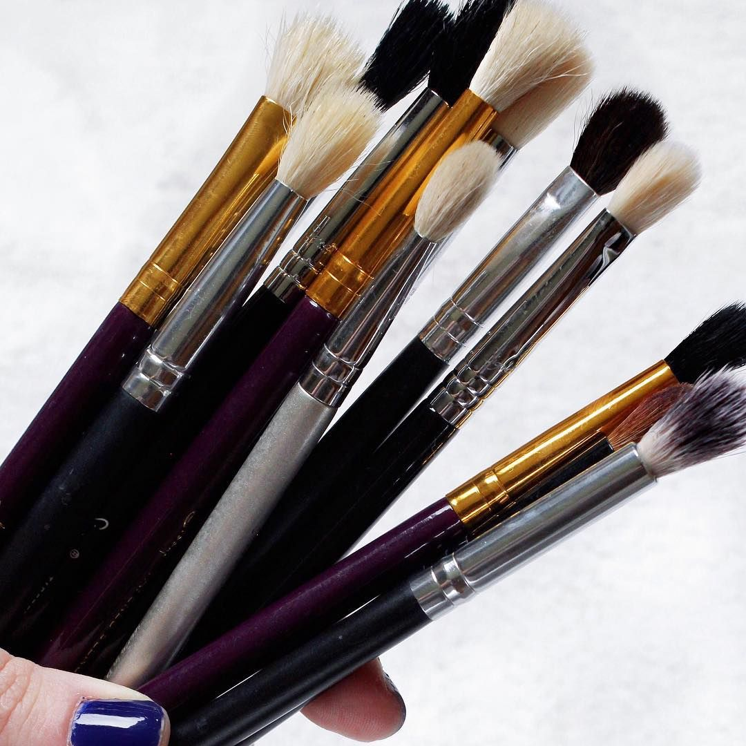 The Best Cheap Makeup Brushes Best cheap makeup, Makeup