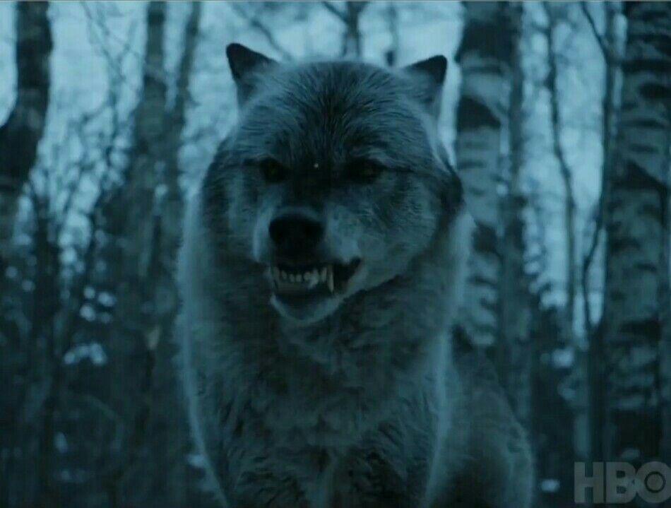 Nymeria (7x2) / Game Of Thrones