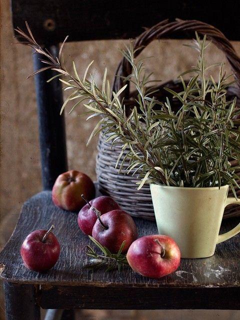 maçãs e alecrim