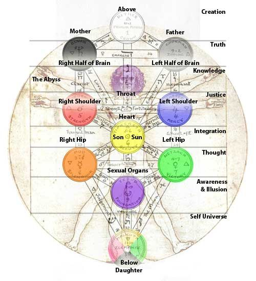 Anatomy And The Tree Of Life Esoteric And Occult Diagrams And