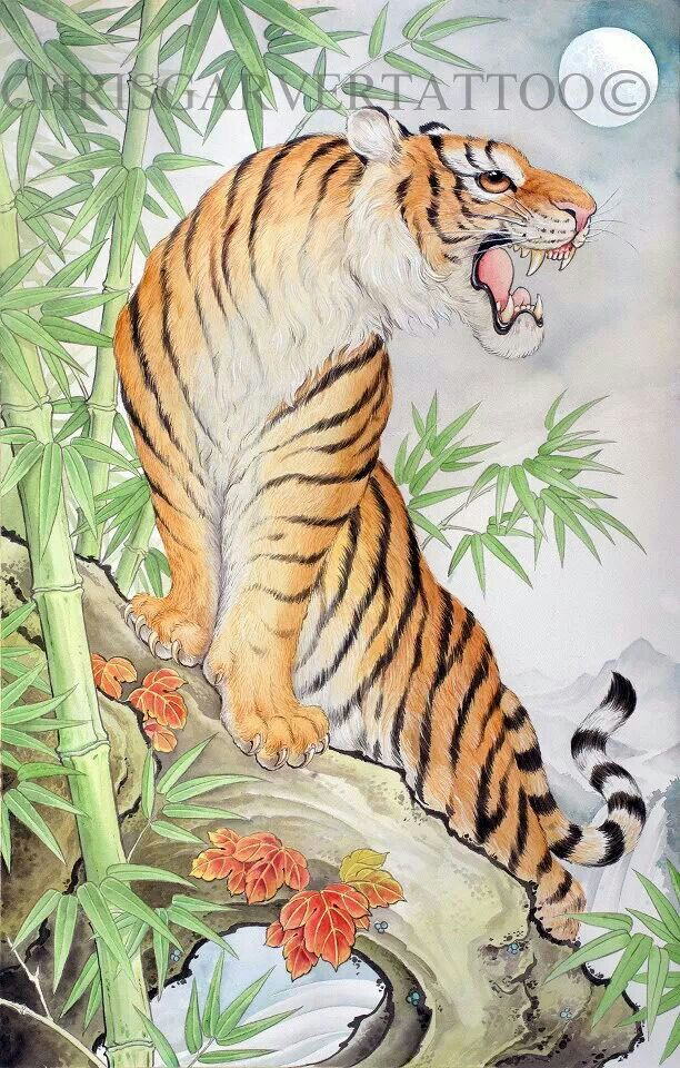 4f695f8aa Tiger and bamboo by chris garver | Other things that I love | Tiger ...