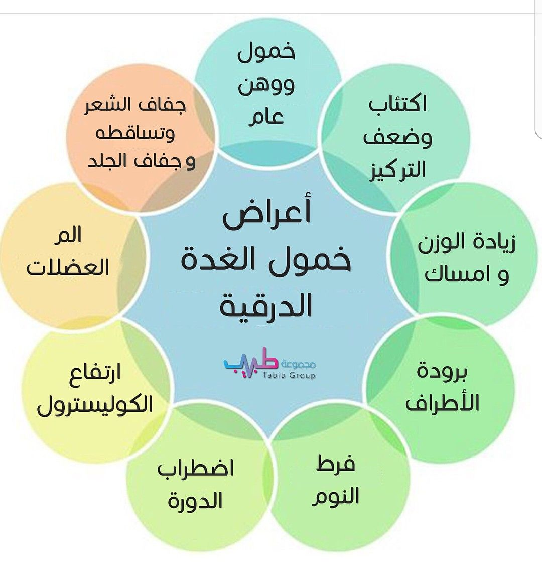 Pin By Nahedha Aladraj On أغراض خمول الغدة الدرقية Pie Chart Chart Life Rules