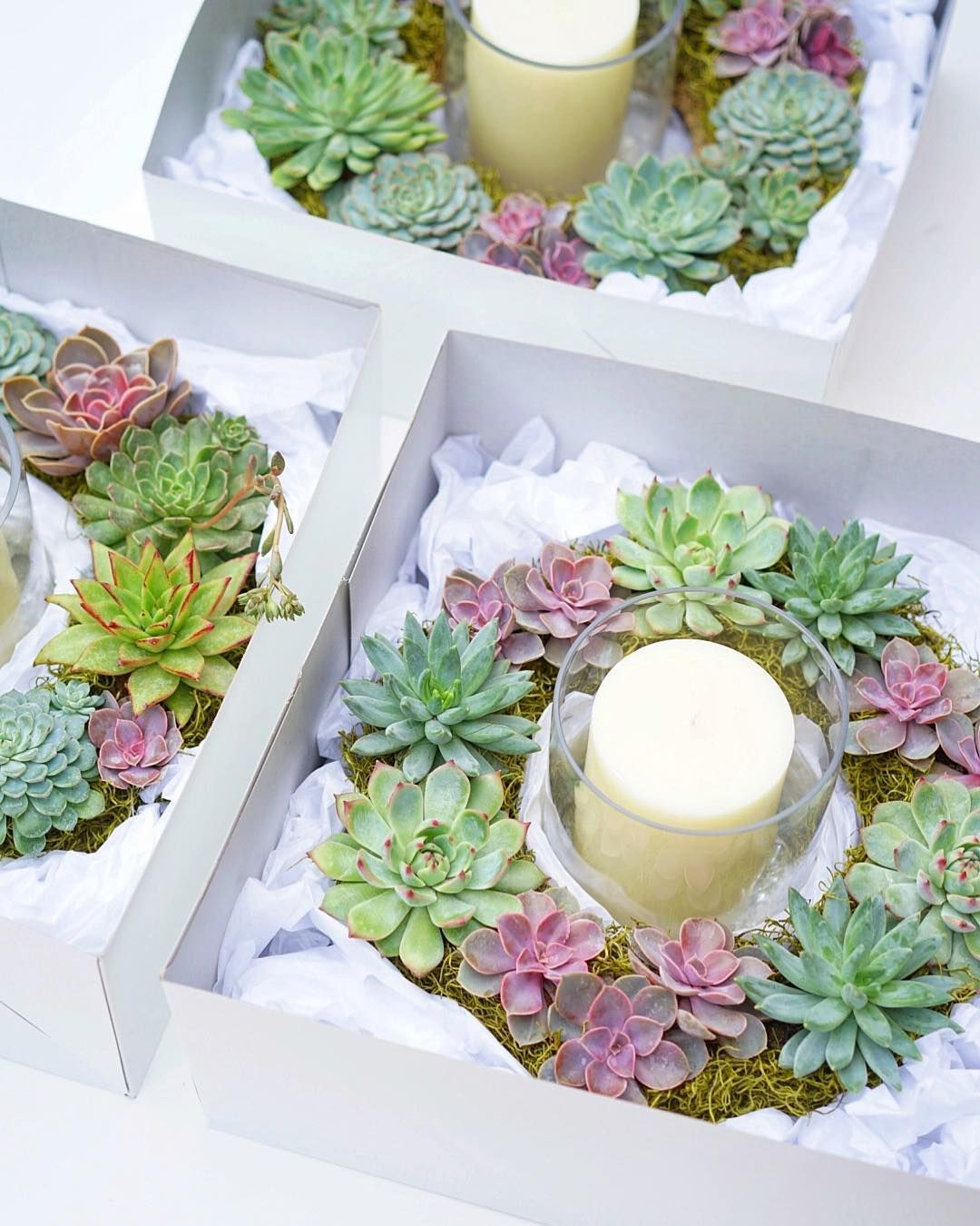 Succulent Wreath Centerpieces By Dalla Vita Christmas Centerpiece