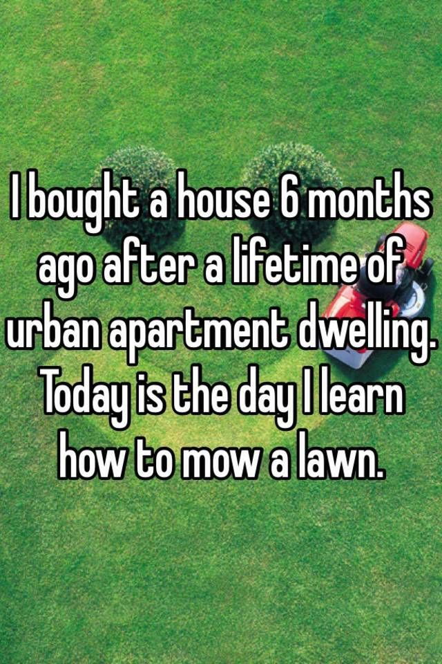 Five Thoughts First Time Homeowners Have Funny Quotes
