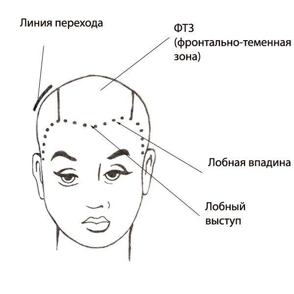 Мелирование волос разделение волос на зоны
