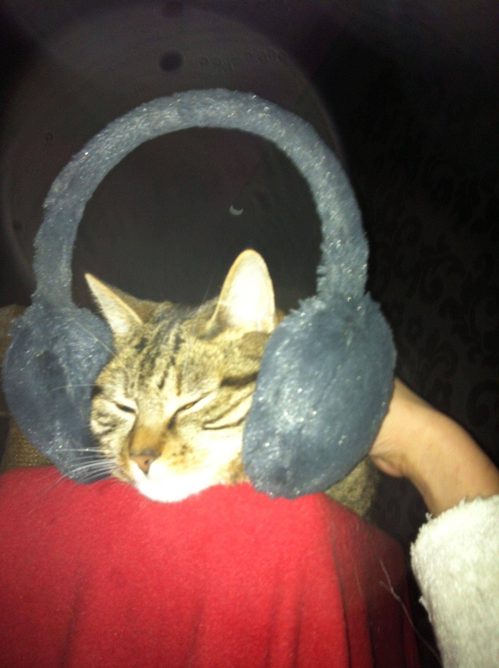 keeping her ears warm ^-^
