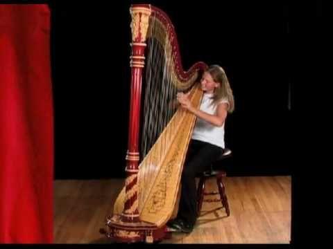 los instrumentos de la orquesta - la seccion de las cuerdas