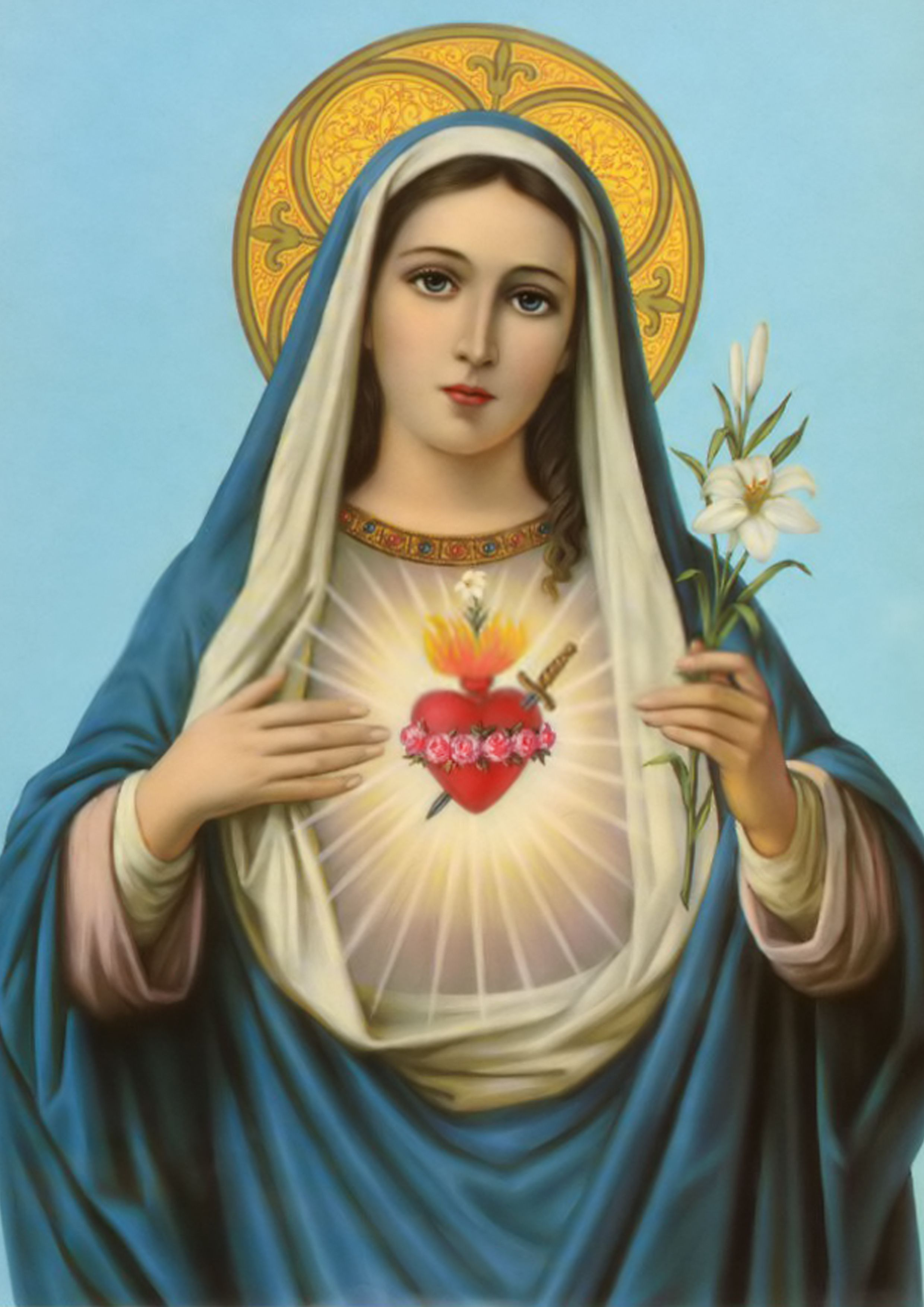 saint bernard the blessed virgin mary