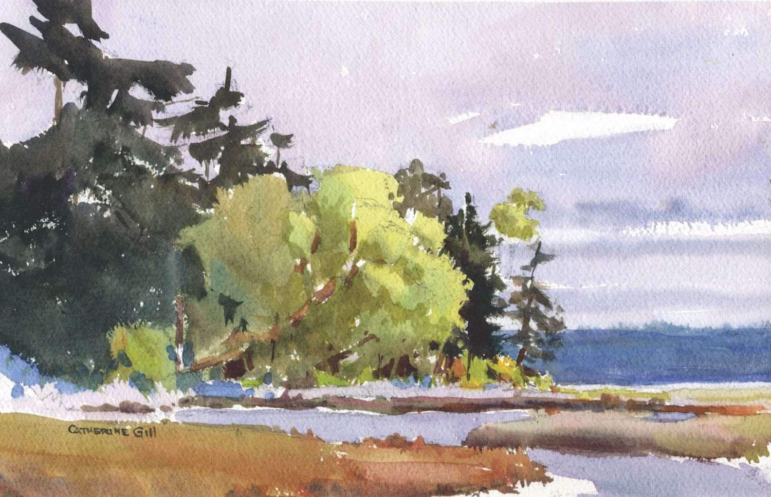 Plein Air Techniques Land, Sea and Sky Watercolor