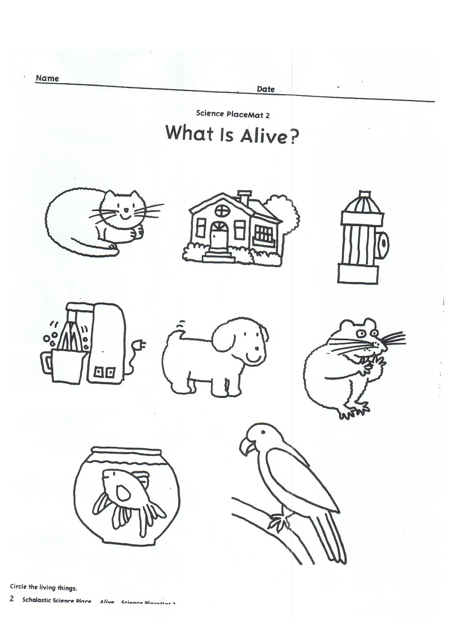 Living And Nonliving Things Kindergarten Worksheets