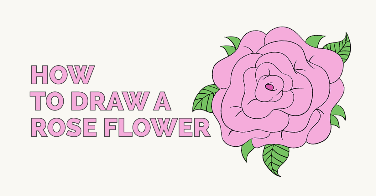 How to Draw a Rose in a Few Easy Steps Flower drawing