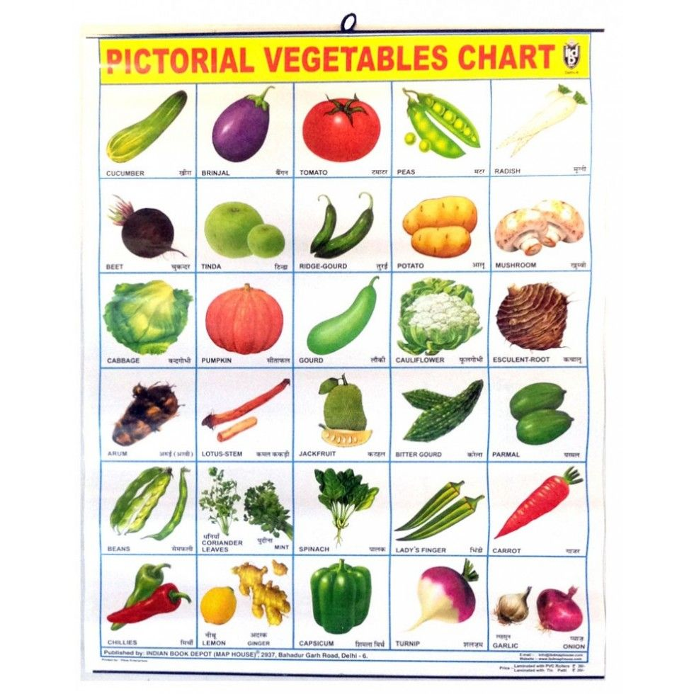 Image for All Vegetables Names In English All vegetables