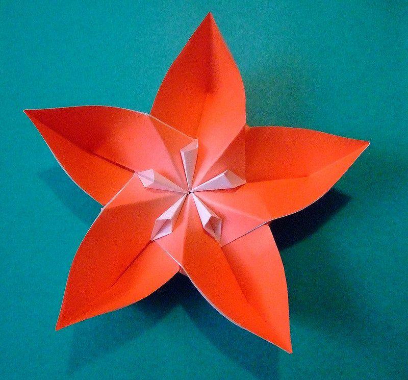 Origami modular flower origami pinterest origami flower and origami modular flower mightylinksfo