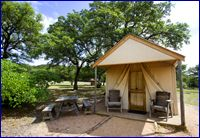 Stay in a tent cabin at Fossil Rim Wildlife Center in Glen ...