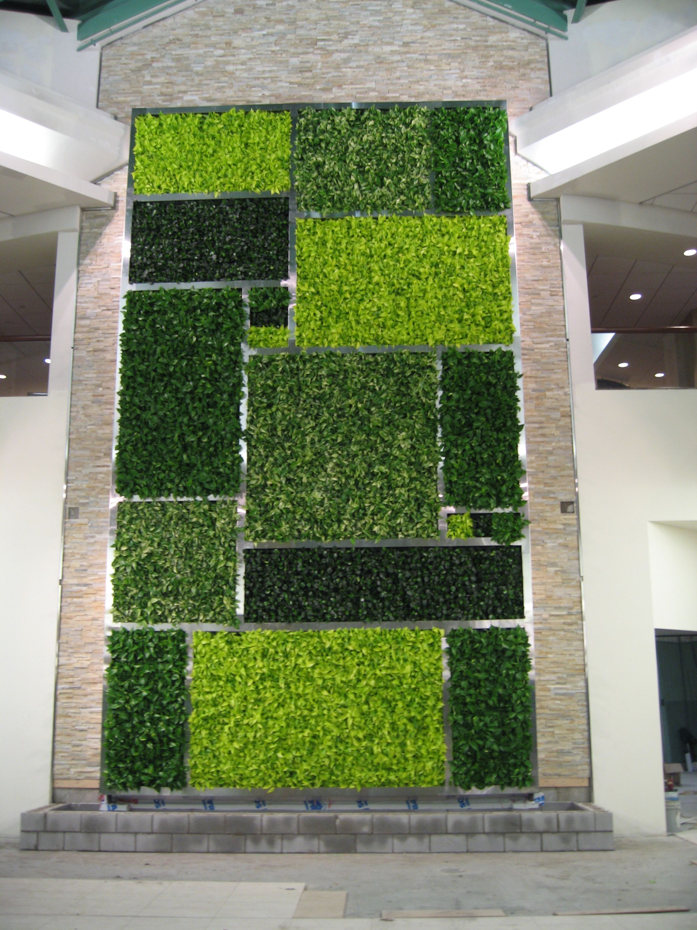 GSky Living Green Wall @ Minto Plaza in downtown Ottawa.  Green