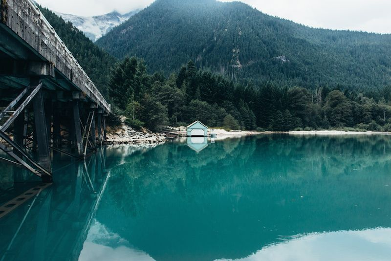 Into the Wild with Griffin Lamb | iGNANT.de