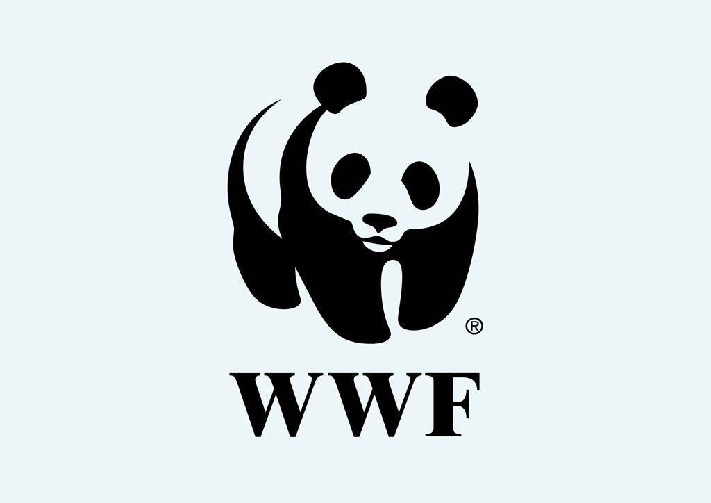 Wwf Wallpapers Wallpapersafari