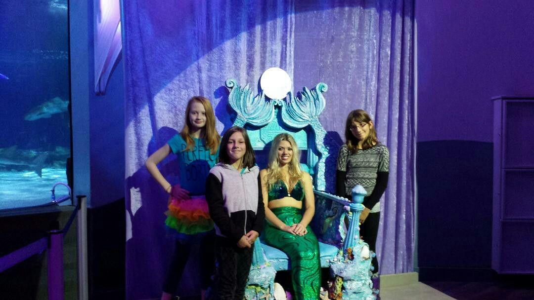 photo regarding Newport Aquarium Coupons Printable known as Newport KY. Newport Aquarium Mermaids My Outdated Kentucky House