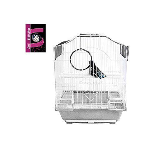Pájaro Sini Producto Color De Jaula Presentación Del Blanco Colibrí 0n8PkwO