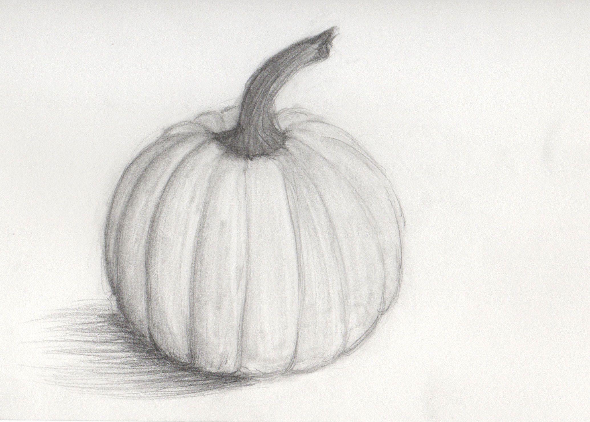 pumpkin drawing with shading. pencil drawings of pumpkins | traditional art sarah j. mora pumpkin drawing with shading d