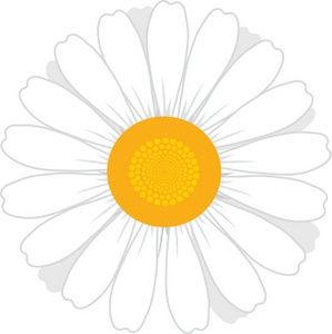 White Flowers Clip Art Daisy Images Stock Photos Clipart Pictures