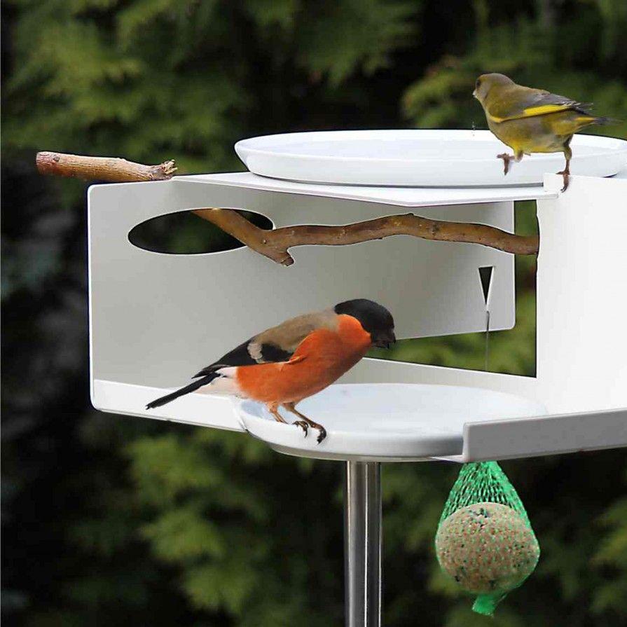 Vogeltränke mit Stab von Oppossum Design bei ikarus | Zukünftige ...