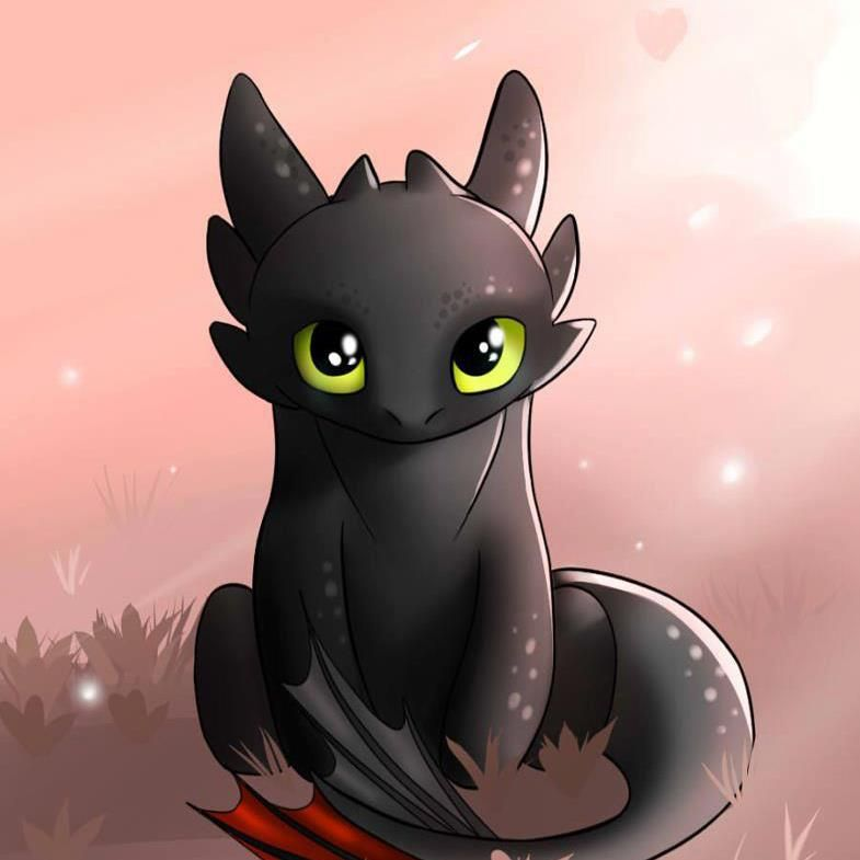 Awwww Toothless I Want Him How To Train Your Dragon