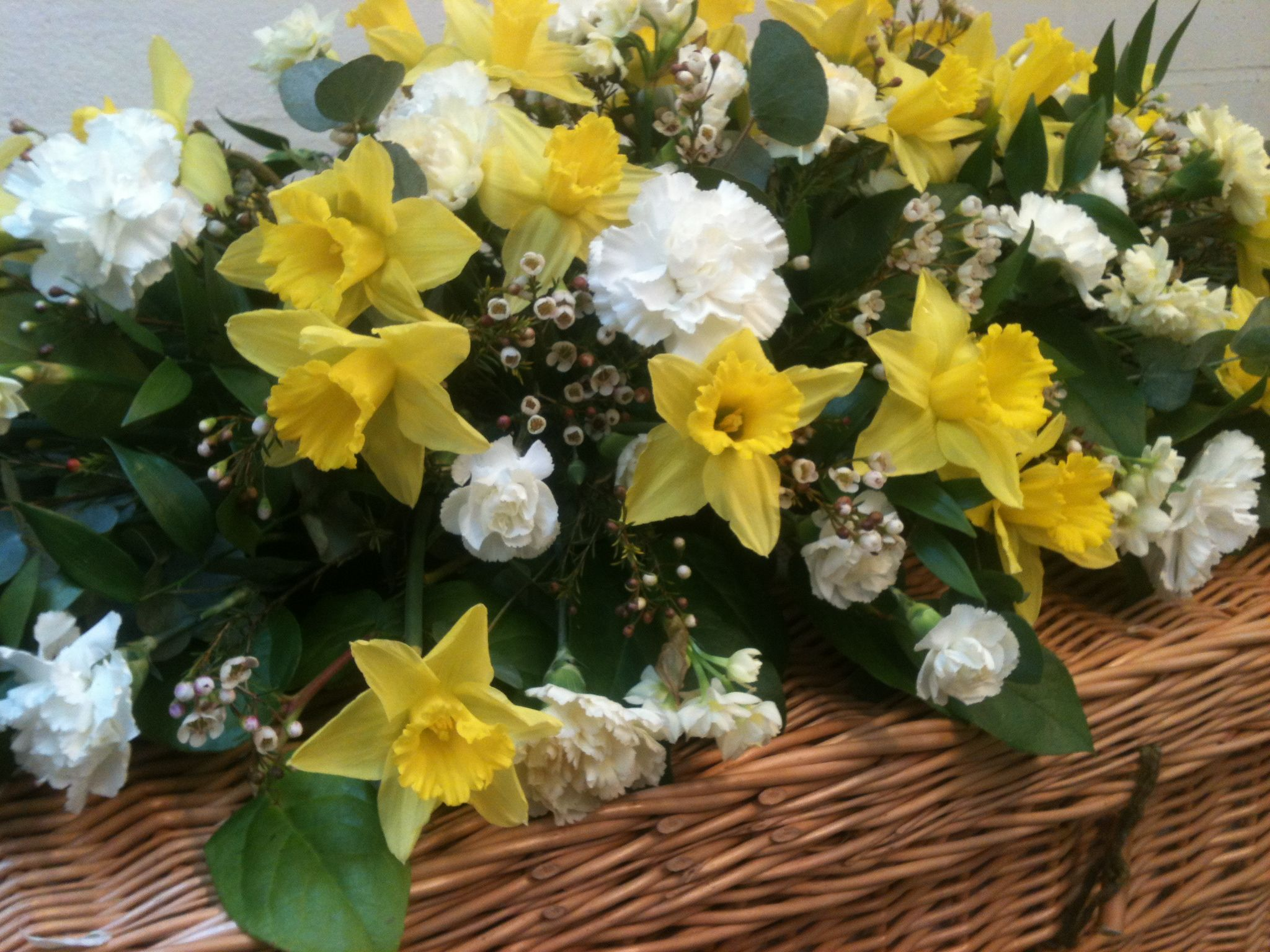 Daffodils White Carnations Floral Colour Pinterest Carnation