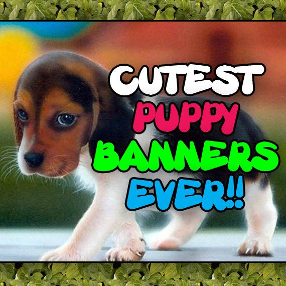 Etsy Puppy Banners Etsy Shop Banners Etsy Pet By Stylepointdesign Etsy Shop Banner Shop Banner Banner