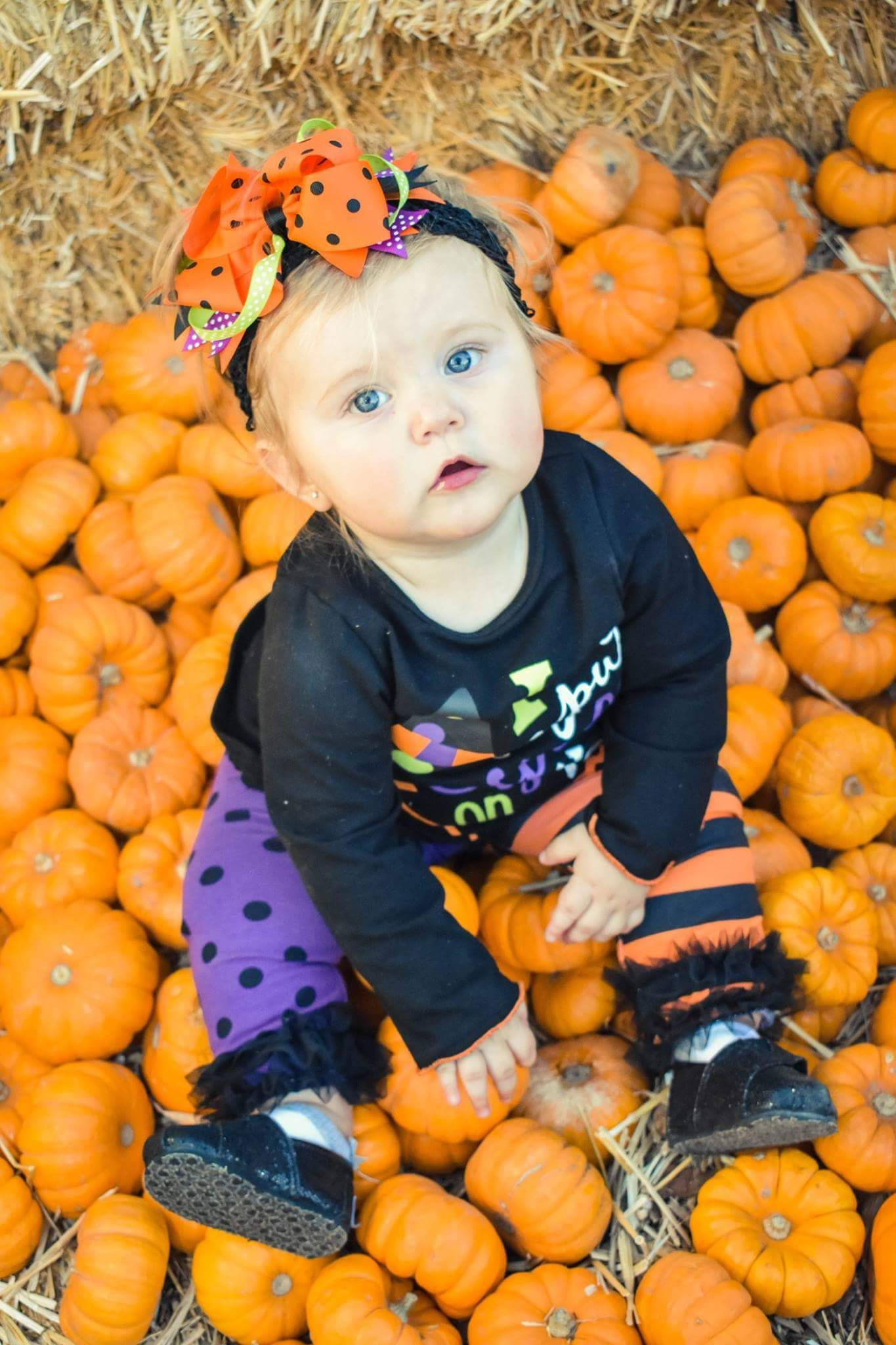pumpkin patch photography baby's first halloween | my photography