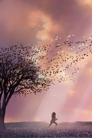 Pin By Mikasabaee On Pink Sky Pictures Aesthetic Backgrounds Cloud Wallpaper