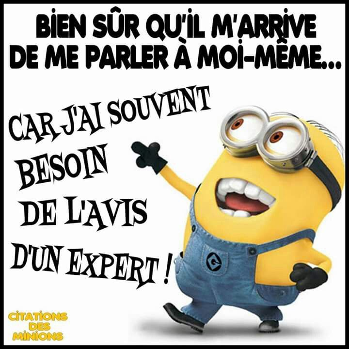 Citations Des Minions Citations Inspirantes Citations