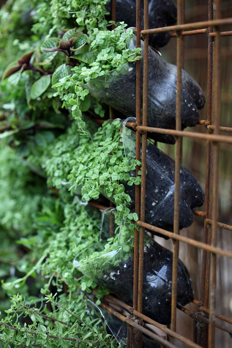 3 Easy vertical gardening ideas | SA Garden and Ho