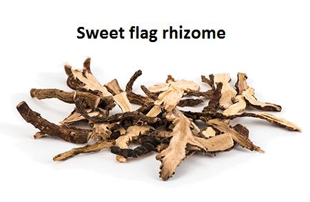 Ayurvedic Uses Of Vayambu Or Sweet Flag Healthyliving From Nature Buy Online In 2020 Ayurvedic Herbs Herbalism Herbal Plants