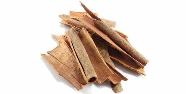 cuales son las propiedades medicinales de la canela