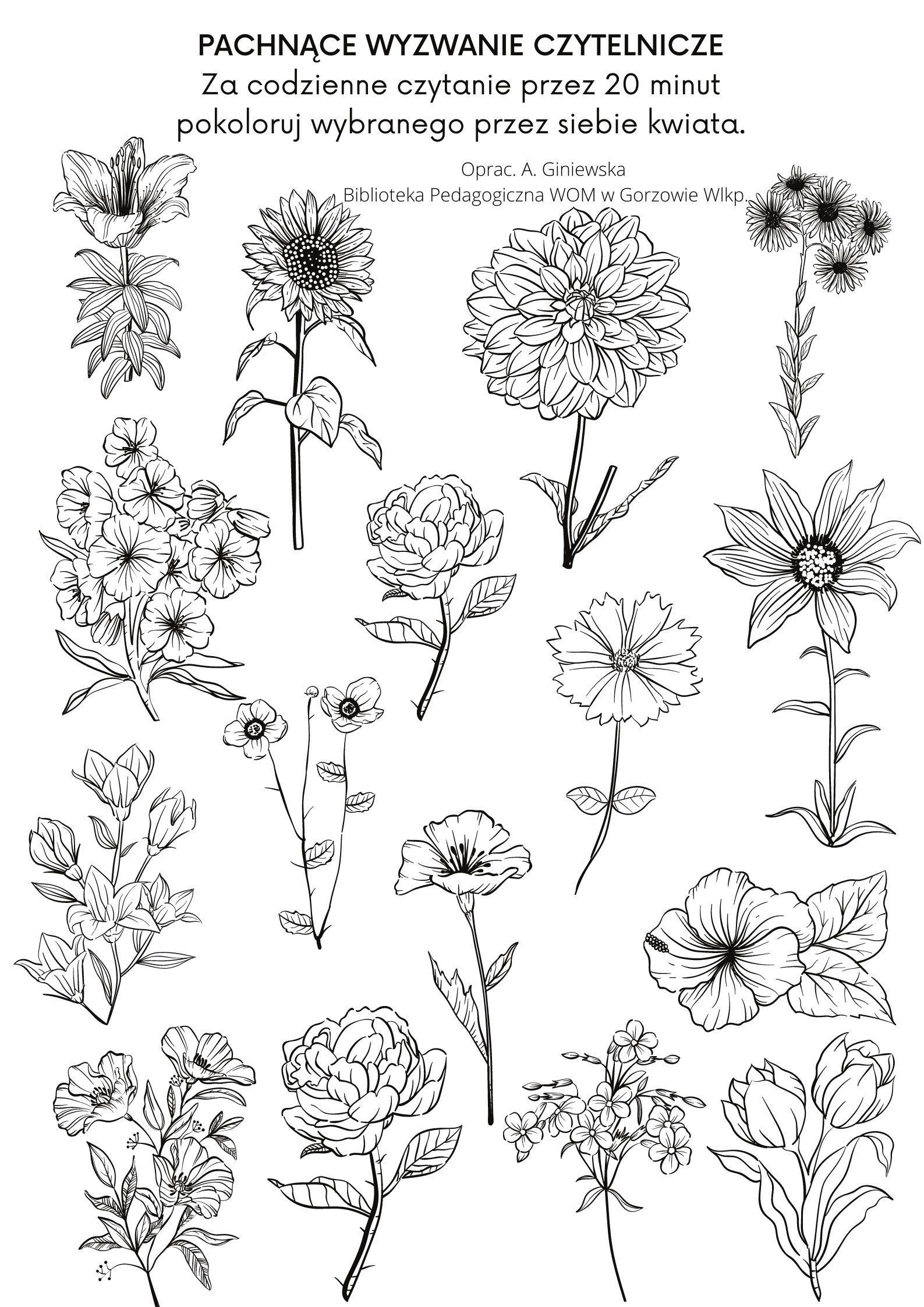 Pachnace Wyzwanie Czytelnicze Kwiaty