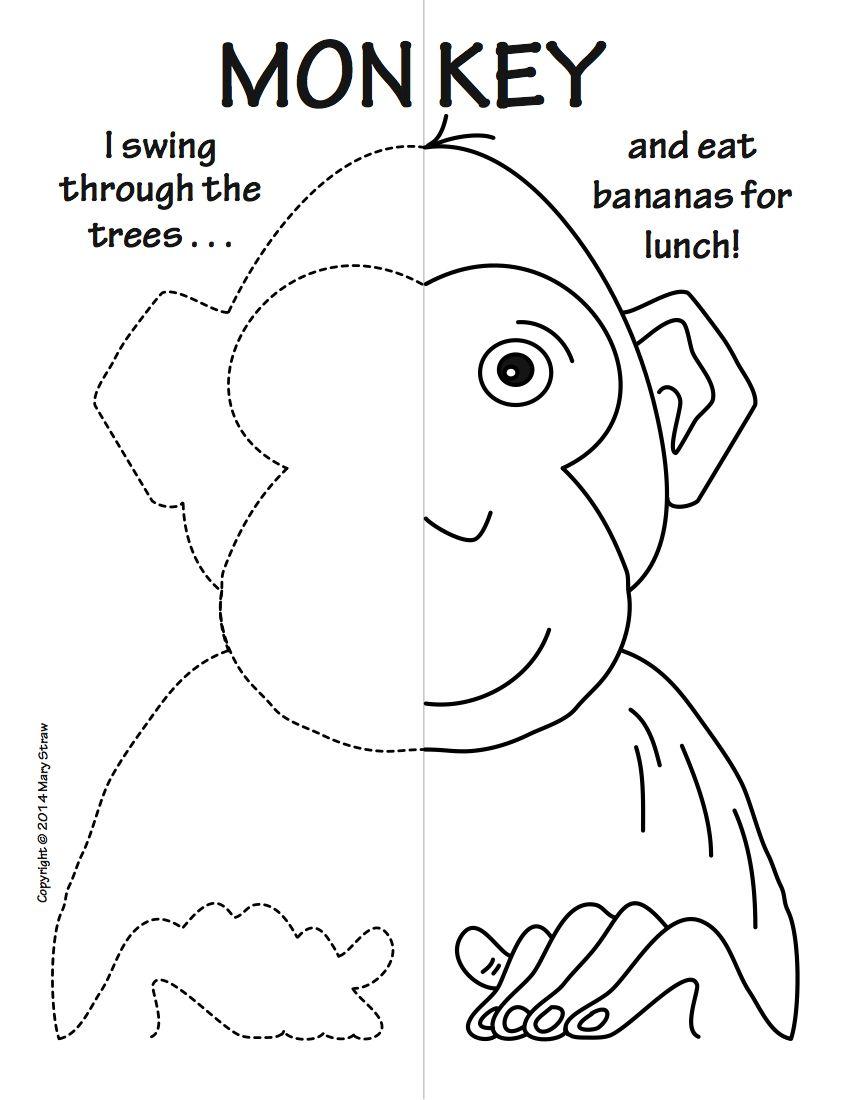 Zoo Animals Symmetry Activity Coloring